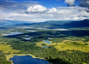 Alaskan Lakes and Forest