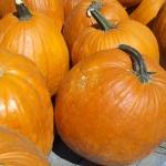 pumpkins (2)